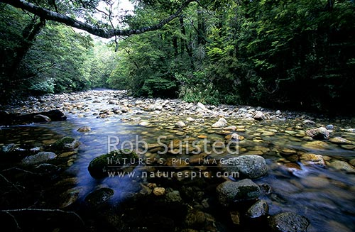 Hope River; Hope Saddle, Nelson, Tasman District, Tasman Region, New Zealand (NZ) stock photo.