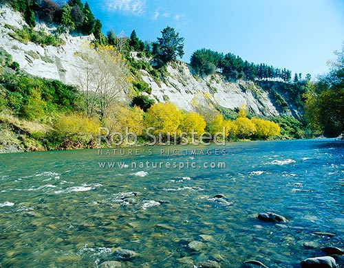 Autumn colours on the Rangitikei River near Mangaweka, Mangaweka, Rangitikei District, New Zealand (NZ) stock photo.