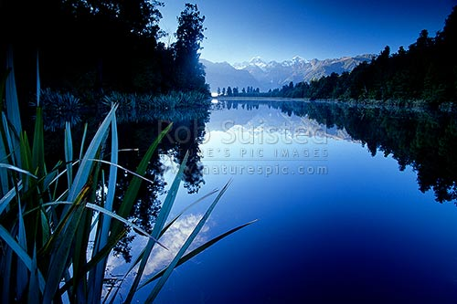 Morning reflection on Lake Matheson. Mount Cook/Aoraki (right;3754m) and Mount (Mt) Tasman (left;3498m), Fox Glacier, Westland District, West Coast Region, New Zealand (NZ) stock photo.