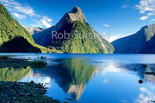 Mitre Peak (1683m) reflected in the beautiful calm fiord waters of Milford Sound, Fiordland National Park, Southland District, Southland Region, New Zealand (NZ) stock photo.
