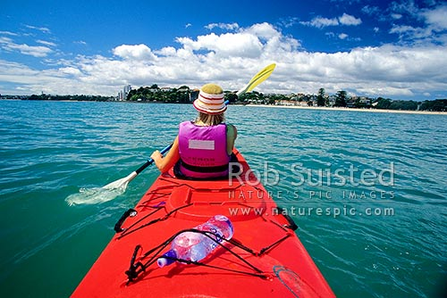 Sea kayaking past Mission Bay, Hauraki gulf, Mission Bay, Auckland City District, Auckland Region, New Zealand (NZ) stock photo.