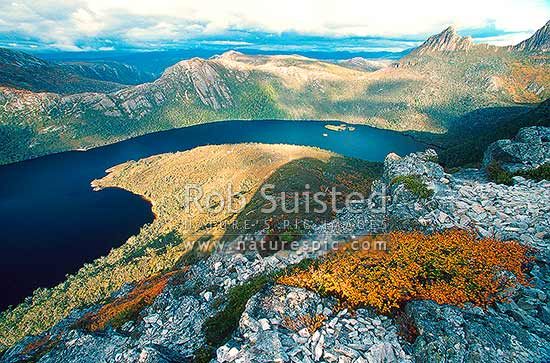 Little Horn and Cradle Mountain (1545m-far right) above Dove Lake from Marion's Lookout, Cradle Mountain National Park, Tasmania District, Australia stock photo.