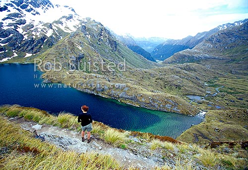 Woman tramper above Lake Harris on the Routeburn Track Great Walk, Mount Aspiring National Park, Queenstown Lakes District, Otago Region, New Zealand (NZ) stock photo.