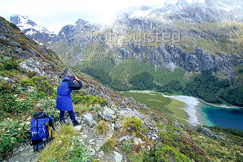 Tramper photographing above Lake MacKenzie. Routeburn Track Great Walk. Hiking the Routeburn Track, Fiordland National Park, Southland District, Southland Region, New Zealand (NZ) stock photo.
