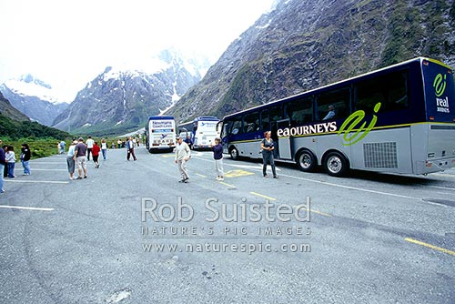 Real Journeys tourist bus trip into Milford Sound in the Hollyford Valley, Fiordland National Park, Southland District, Southland Region, New Zealand (NZ) stock photo.