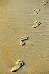 Footprints of beach