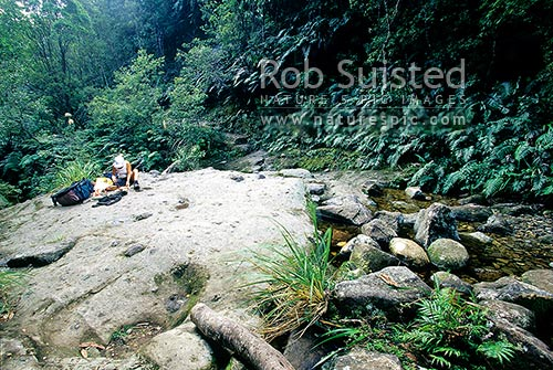 Tramper preparing lunch in Webb Creek en route to the Pinnacles Hut, Kauaeranga Kauri Trail, Kauaeranga Valley, Thames-Coromandel District, Waikato Region, New Zealand (NZ) stock photo.