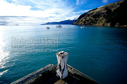 French Pass Wharf (Anaru) in Admiralty Bay, with D'Urville Island beyond at left. Marlborough Sounds, French Pass, Marlborough District, Marlborough Region, New Zealand (NZ) stock photo.