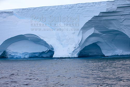 Wave action sculptured caverns in the Drygalski Ice Tongue from wave action. Shows snow layers, Ross Sea, Antarctica District, Antarctica Region, Antarctica stock photo.