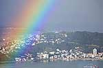 Wellington Rainbow