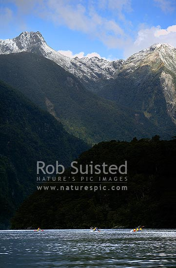 Wilderness sea kayaking trip in Doubtful Sound, Fiordland National Park. Fresh dusting of snow on mountains, Doubtful Sound, Fiordland, Southland District, Southland Region, New Zealand (NZ) stock photo.