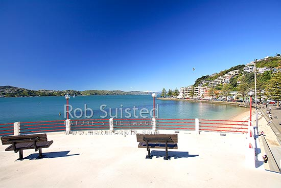 Oriental Bay beach, Parade and Wellington Harbour from top of the Band Rotunda, Wellington, Wellington City District, Wellington Region, New Zealand (NZ) stock photo.