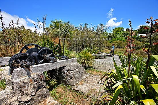Rawene Mangrove Walkway and boardwalk past remains of an historic Kauri mill winch set, Rawene, Hokianga, Far North District, Northland Region, New Zealand (NZ) stock photo.