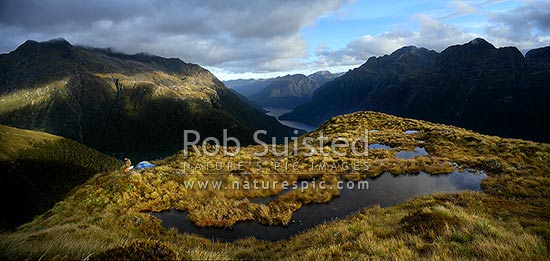 Wilderness alpine tent campsite above North Fiord of Lake Te Anau and the Glaisnock River Valley. Camping next to tarns tussock at dusk, Fiordland National Park, Southland District, Southland Region, New Zealand (NZ) stock photo.