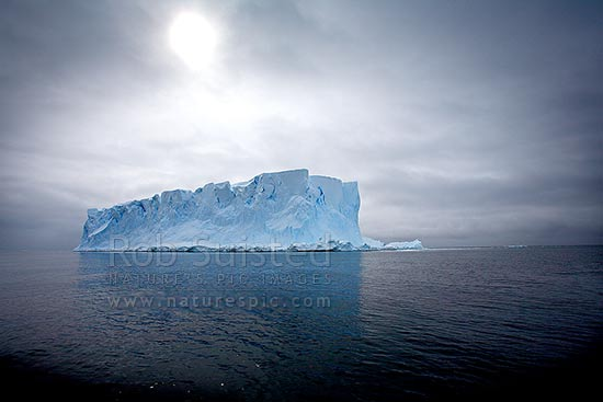 Tabular iceberg floating on a calm sea. Showing crevasses and snowfall striations, East Antarctica, Antarctica Region, Antarctica stock photo.