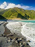 South Remutaka Forest Park coast
