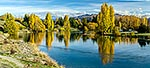 Clutha River autumn, Albert Town