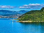 Point Halswell, Wellington Harbour