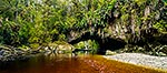 Oparara River and Arch, Kahurangi N.P.