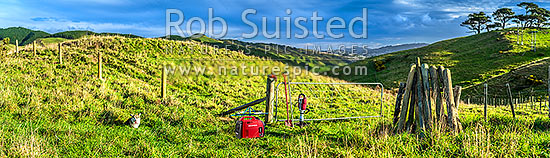 Fencing. Rural fencer building a new post and batten 8 wire fence and hanging new gate, with power generator and fencing tools. Dog watching on. Panorama, New Zealand (NZ) stock photo.