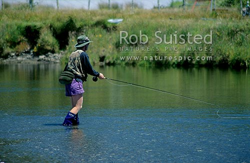 Trout fisherman, waiting for the take - Sandy Creek, South Westland, New Zealand (NZ) stock photo.
