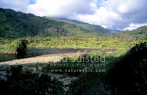 The Kohaihai River at the end of the Heaphy track, Kahurangi National Park, Buller District, West Coast Region, New Zealand (NZ) stock photo.