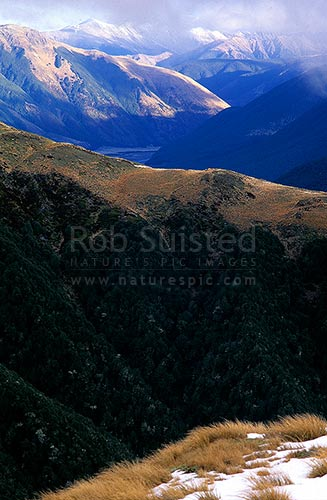 From Travers Peak (above Lewis Pass) down the Lewis Valley. Foleys Ck in foreground, Lewis Pass, Hurunui District, Canterbury Region, New Zealand (NZ) stock photo.