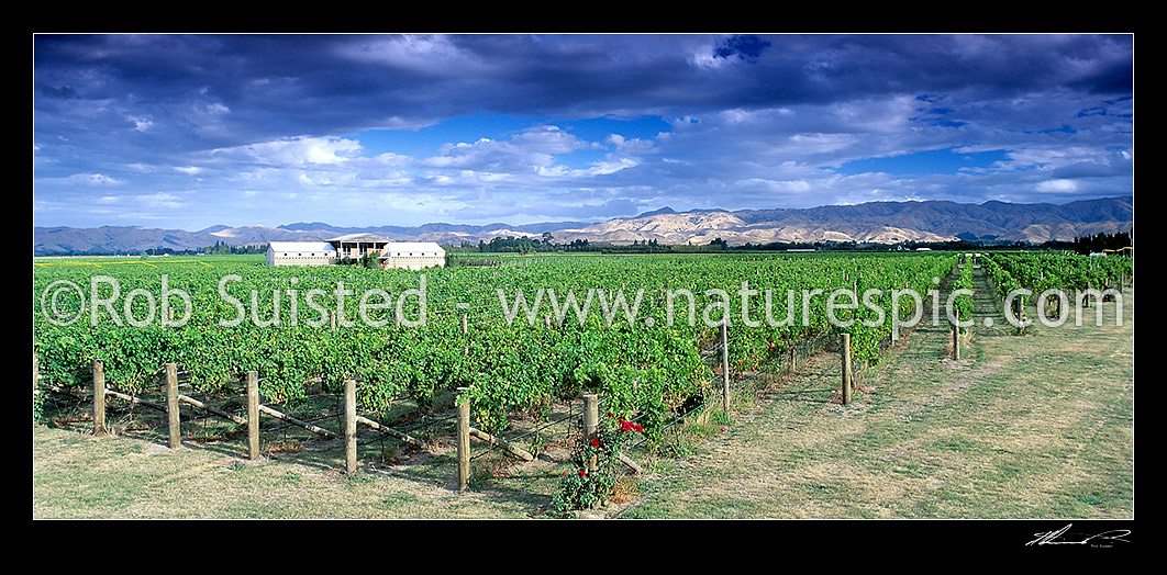 Image of Fromm Winery in Marlborough, Marlborough, Marlborough District, Marlborough Region, New Zealand (NZ) stock photo image