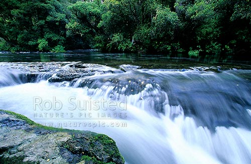 Aniwaniwa Stream at the top of Te Tangi o Hinerau falls, Te Urewera National Park, Te Urewera National Park, Wairoa District, Hawke's Bay Region, New Zealand (NZ) stock photo.